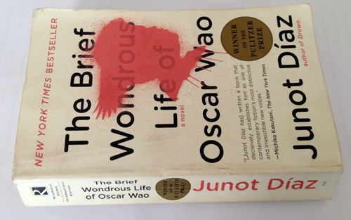 """the brief wondrous life of oscar wao 2 essay Junot diaz's novel, """"the brief wondrous life of oscar wao"""", described the life of oscar from youth to death in different point of view in elementary school, like most kids in this age, oscar was a happy boy who always gets all the attention and is always trying to kiss the girls (diaz 11."""